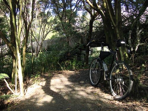 Unsworth Reserve Trail