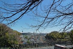 小机城址市民の森(横浜スタジアム方面)