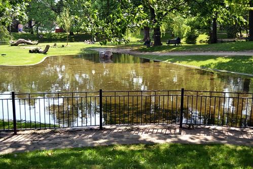 The Pond - Westmount Park