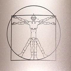 Robbixa vu par Léonard de Vinci