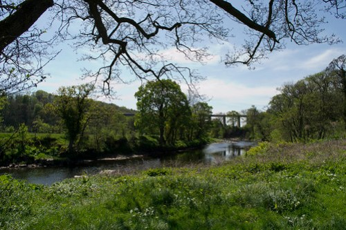 The River Ayr and the Enterkine Viaduct