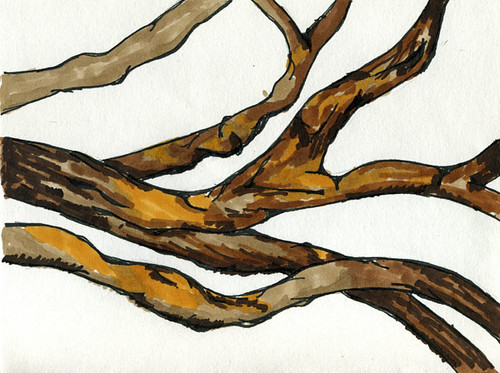 Wooden Branches