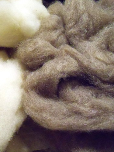 washed romney roving