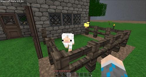 Minecraft - Animal Pen