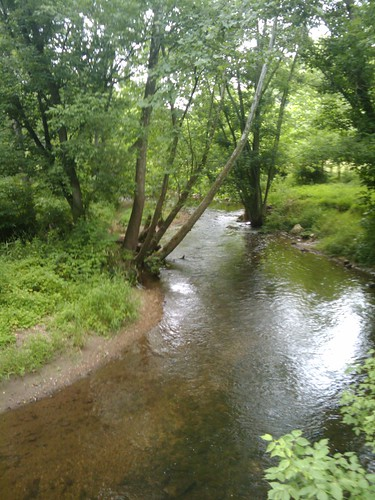 Stream around the corner from my house.