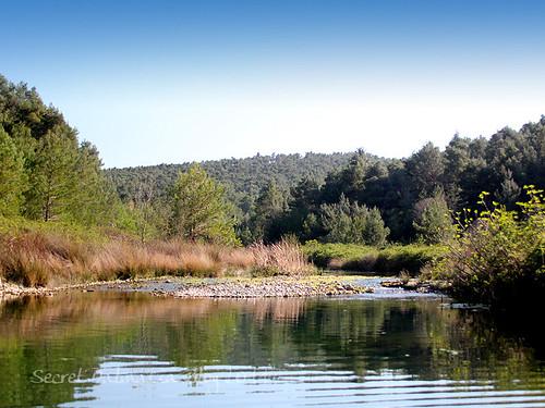 Karišnica river