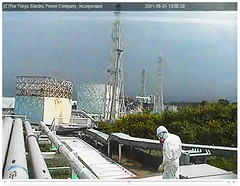 Fukushima live cam by TEPCO: worker I