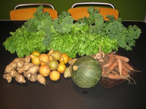 Amelishof organic CSA vegetables week 50, 2010