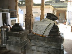 Ambal shrine Nandhi