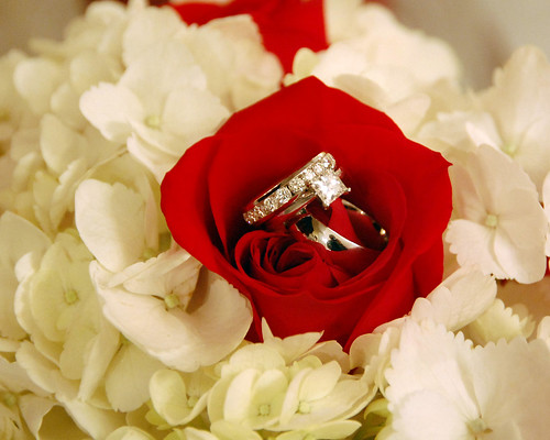 Wedding Rings in Rose