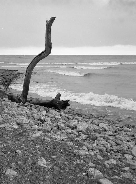 Toronto Beaches 21/11/10