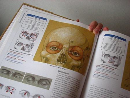 anatomybk2