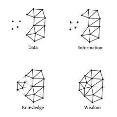 Data, Information, Knowledge, Wisdom 0.1
