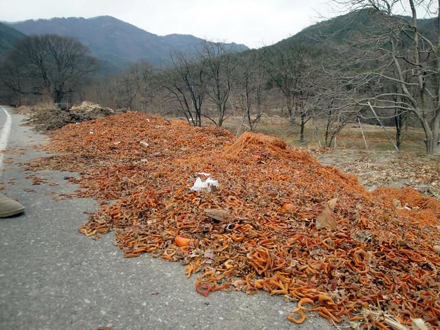 Disgarded persimmon bits