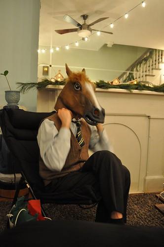 Matt is a dapper horse