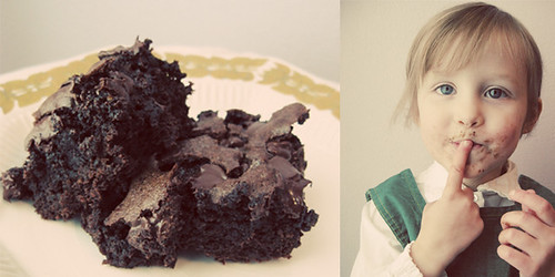 Brownie Diptych