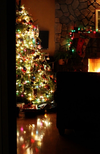 Christmas tree, looking in from outside