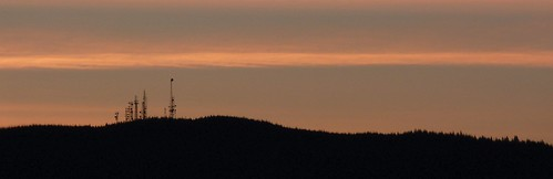 prairie dogs on the horizon