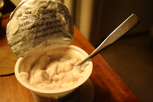 Oikos Strawberry Yogurt