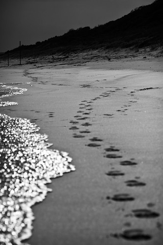 footsteps by Matt Hovey