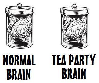 Tea Party Brain