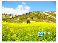 Cyprus at the heart of Spring