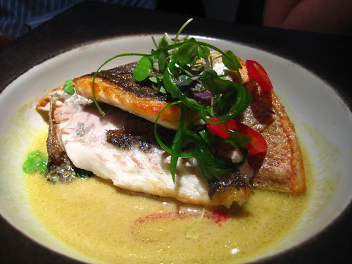 Pan seared Bronzini, Shanhai shoots in a spiced chili broth