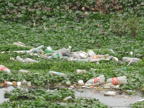 Basura en el Humedal Tibabuyes, Febrero de 2011