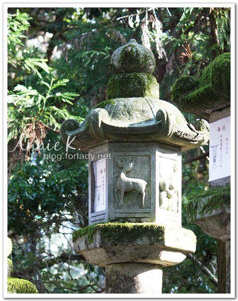 奈良_鹿石燈