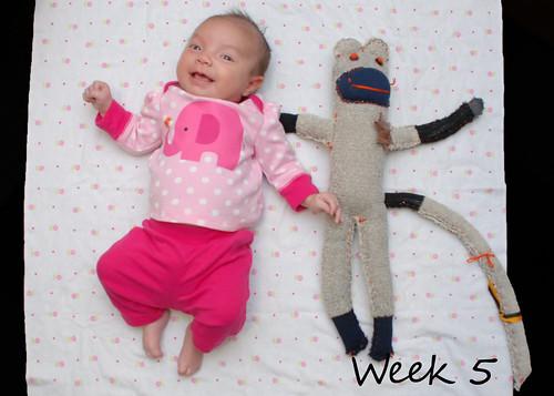 Week 5 - March 12 2011