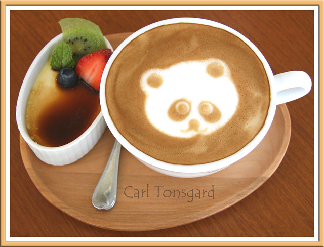 Panda by Carl Tonsgard