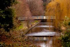Winter bridge by Steve-h