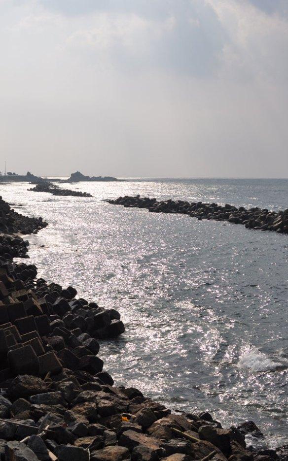 冬の日差し~笹川流れ