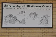 Alabama Aquatic Biodiversity Center