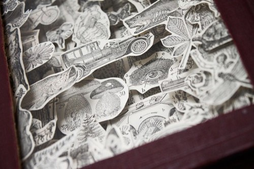 Julia Field Book Carvings 3b