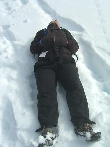 Alaskan Sunbathing