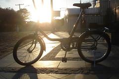 Bicicleta - É o transporte mais barato, sustentável e democrático