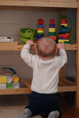 Jack Climbs The Shelf