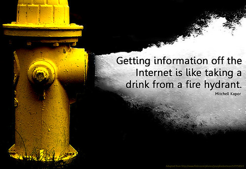 """Getting information of the Internet..."" poster by Will Lion"