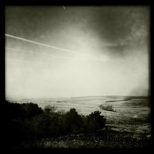 Moorland (B&W)