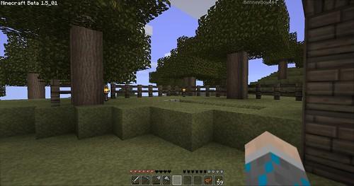 Minecraft - New Garden