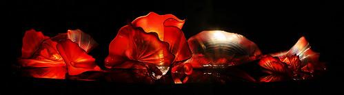 Dale Chihuly, Garnet Persian Set