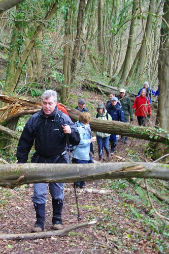 20110227-35_Obstacle Course in Astridge Wood by gary.hadden