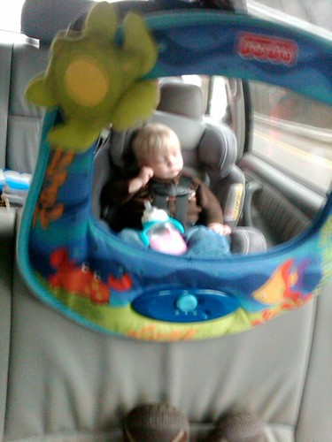 car nap mirror