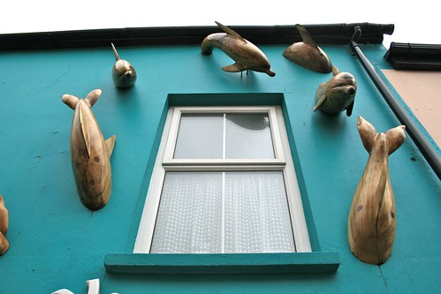 A Cool House in Dingle