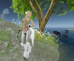 Fantasy Faire ... Unicornuus