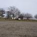 farm view March11