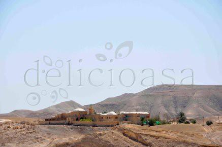 in desertul Iudeei