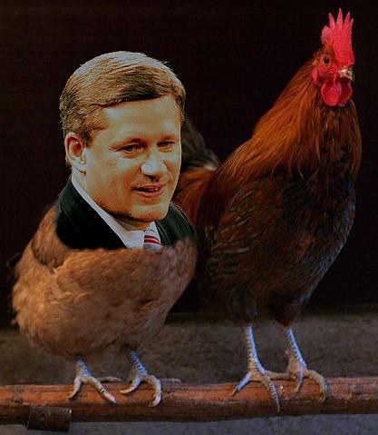 Harper and Ignatieff refuse to debate Elizabeth May