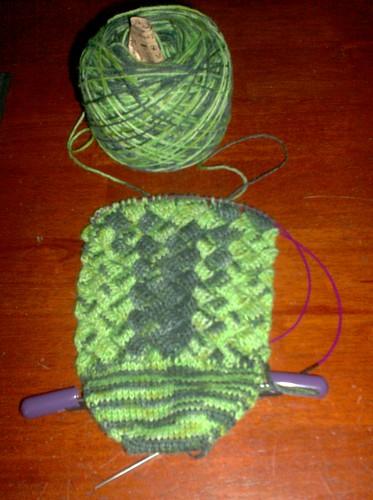 Crocodilian Socks - Sock 1 progress